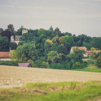 Baumallee_Schloss_Haus_Thalmassing_DanischDesign